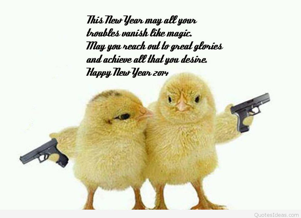 Happy New Year Best Funny Pictures