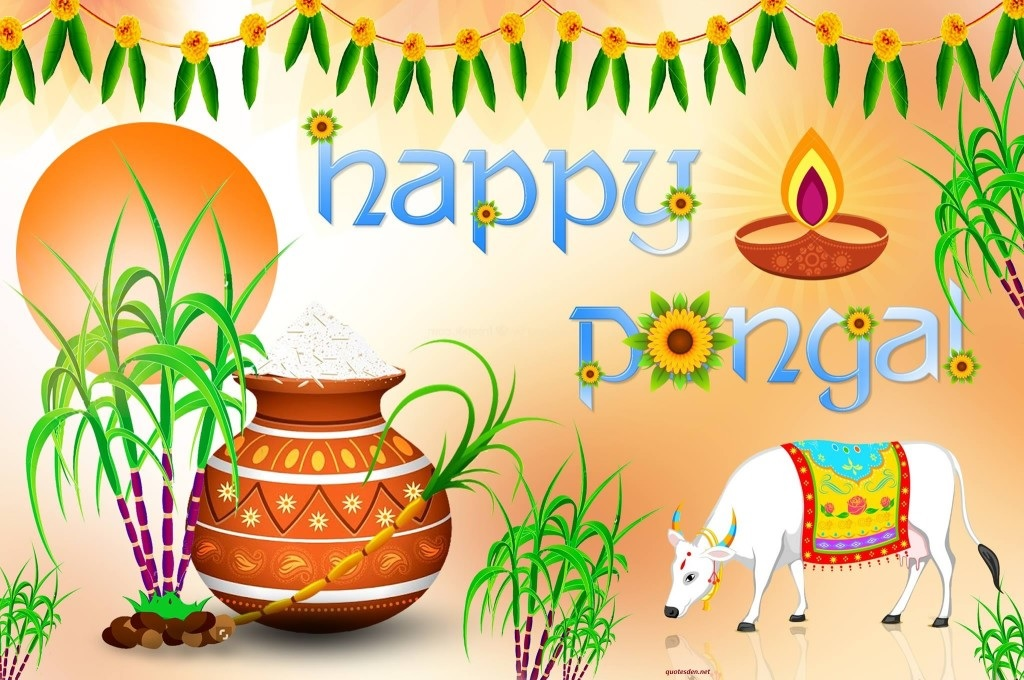 Happy Pongal Full HD Wallpapers Download