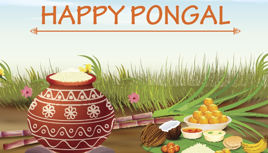 Happy Pongal Full HD Wallpapers