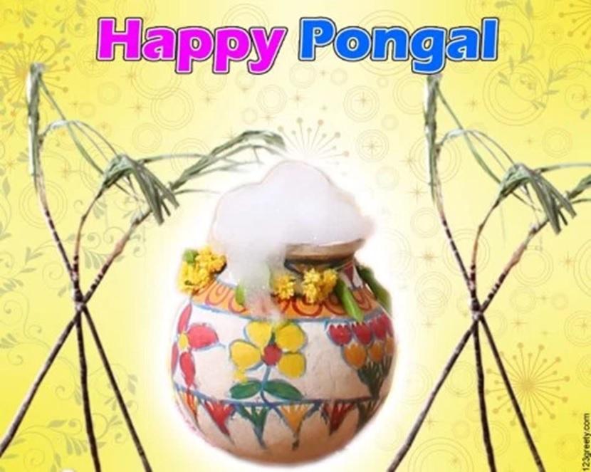 Pongal Full HD Photos