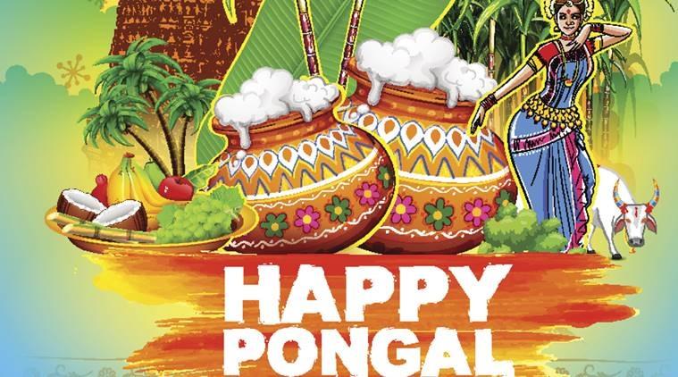 Pongal HD Photos