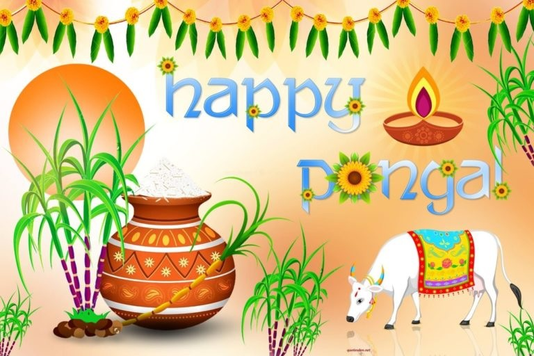 Pongal HD Wallpapers