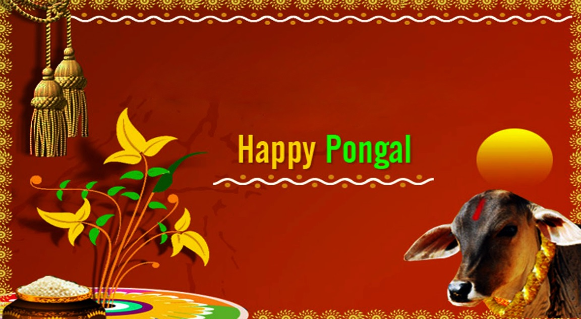 Pongal Whatsapp DP