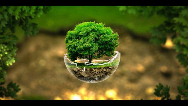 happy earth day grow green trees hd wallpaper